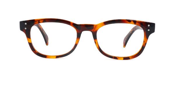 2249 Fenton Rectangle,Oval tortoiseshell glasses