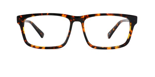 8850 Harald Rectangle tortoiseshell glasses
